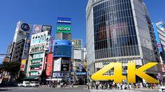 Tokyo Shibuya Crossing Part II - 渋谷スクランブル交差点 - 4K Ultra HD
