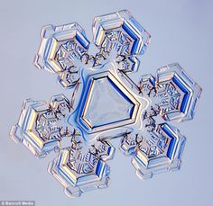 Snowflake image captured using a photo-microscope by Kenneth Libbrecht