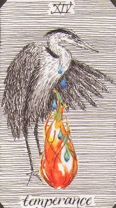 She pulls a card each morning to use an affirmation for the day.   WILD UNKNOWN TAROT --------- **XIV - Temperance**