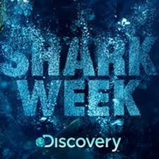 Shark Week on The Discovery Channel