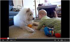 best friends - Dog & baby playing for the first time :) Watch here: http://awesomeanimals001.blogspot.co.il/2013/03/best-friends-dog-baby-playing-for-first.html