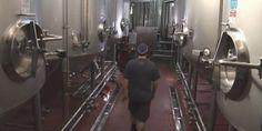 Spotlighting fermentation and filtering at Boulevard Brewing