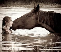 Girl & her horse affection  Gentle giants
