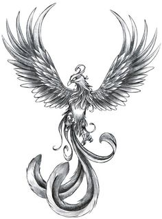 ave fenix tattoo - Google zoeken                                                                                                                                                     Más