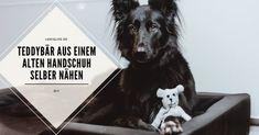 LokisLife   Hundeblog LokisLife   Hundeblog - Ein deutschsprachiger Blog über das Leben mit einem Hund aus dem Auslandstierschutz. Leser finden hier unter anderem DIYs, Literaturtipps, Produkttests, Empfehlungen und Tipps zur Hundeerziehung. Upcycling für Hundehalter: Mit dieser Anleitung nähst du ganz leicht einen Teddybären aus einem alten Handschuh für deinen Vierbeiner. Der Beitrag DIY: So nähst du aus einem alten Handschuh ein Kuscheltier für deinen Hund erschien zuerst auf LokisLife   Hund Dogs, Animals, Dog Training Tips, Animal Welfare, Gloves, Cuddling, Hang In There, Repurpose, Life
