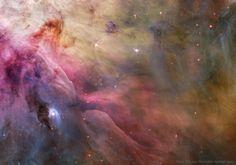 LL Ori and the Orion Nebula