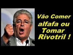 """REQUIÃO MANDA POVO COMER ALFAFA ! """" INTERVENÇÃO CIVIL """" """" INTERVENÇÃO MI..."""