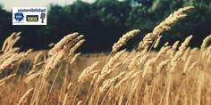 Nostoc Biotech trata y revive de forma ecológica los campos con humus de lombriz Desbloquear la tierra. Esta llamativa frase de tres palabras encierra en si misma muchos significados y nos hace reaccionar con muchas preguntas e inquietudes. Primer pensamiento que nos llega es: ¿Se puede bloquear la tierra? La segunda conclusión que formulamos, en…