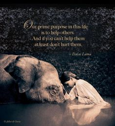 prime purpose in life...