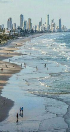 Dear Marty, I have organised a special day at the beach on the Queensland Gold…