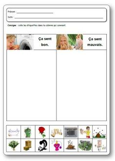 The 5 senses: smell, 5 senses smell maternal activities Kindergarten Science Activities, Science Lessons, Activities For Kids, Preschool, Autism Education, Art Education, French Education, Maternelle Grande Section, French Classroom