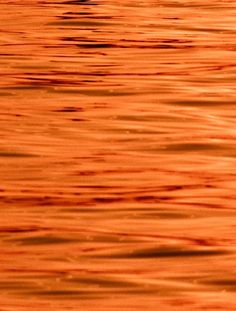 Orange Orange Orange!