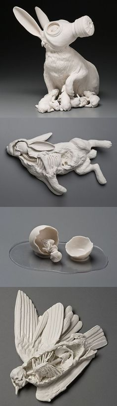 "Beautiful and thought-provoking porcelain sculptures by Kate MacDowell. ""These pieces are in part responses to environmental stressors including climate change, toxic pollution, and gm crops. They also borrow from myth, art history, figures of speech and other cultural touchstones. In some pieces aspe..... ourselves and act out sometimes harrowing, sometimes humorous transformations which illustrate our current relationship with the natural world.""…"