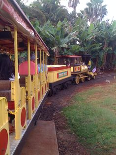 Dole Plantation Pineapple Express. I think the kids would really get into the train ride.