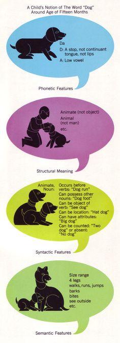 An Overview of Constructive Developmental Theory: Robert ...