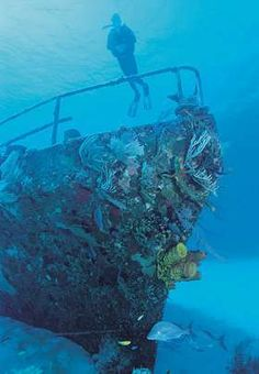 Cayman Brac, 2000: One of my favorite dives at Cayman Brac...I love the encrusted prow of this sunken tug boat!