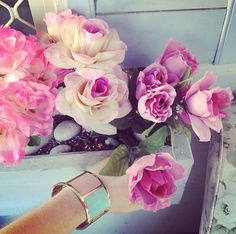 beautiful pink/red roses