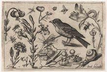 nowe-Collected works of Kama Jackowska - All Rijksstudio's - Rijksstudio - Rijksmuseum