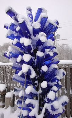 Love the bottle tree; love the blue bottles!!