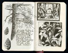 diarios de bocetos