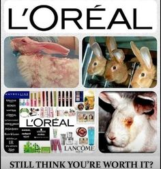 does covergirl test on animals