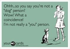 20 Smart Sayings That Are Perfect For International Dog Day - World's largest collection of cat memes and other animals Animal Quotes, Dog Quotes, Funny Quotes, Animal Humor, Parent Quotes, Animal Pics, Animal Memes, Teacher Appreciation, I Love Dogs