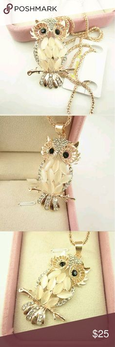 Crystal Rhinestone Owl Pendant Necklace Gorgeous Crystal Rhinestone Owl Pendant Necklace, never work Jewelry Necklaces