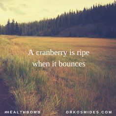 A cranberry is ripe when it bounces. #HealthBomb #Trivia #Food