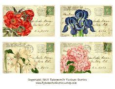 Ephemera's Vintage Garden: Weekly Freebie:  Printable Botanical Postcards