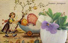 le bianche margherite: Buona Pasqua