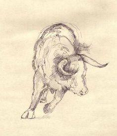 pencil bull