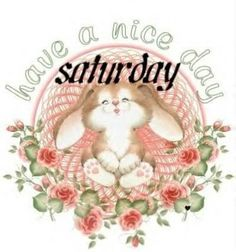 Have a nice Saturday quotes quote morning saturday saturday quotes