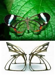 biomimicry design - Google Search
