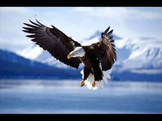 Take It To The Limit ~ Eagles