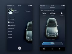 car remote by Keeev
