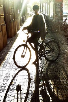 Furry on a bike by Barcelona Cycle Chic, via Flickr