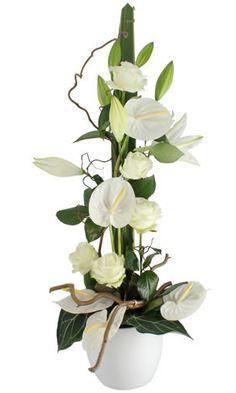 Florajet vous dévoile Laure, une somptueuse composition de fleurs fraîchement sélectionnées pour transmettre tous vos sentiments. Cette délicate création florale vous assure un superbe moment de tendresse.