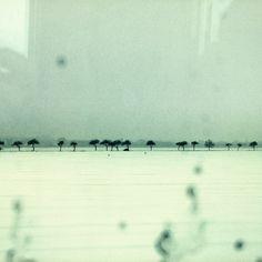 9. Dezember 2012 by Filterkaffee.deviantart.com on @deviantART