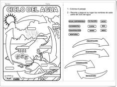 Ciclo del agua (Ficha de Ciencias Sociales de Primaria) Earth Science, Science And Nature, Weather Unit, 5th Grade Science, Water Cycle, Dual Language, Interactive Notebooks, Life Cycles, Teaching English