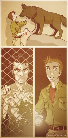 Wolf!Derek and Trainer!Stiles. I love this concept so much it's frightening. By Miss Lucifd on Tumblr.