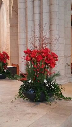 Interesting xxl flower arrangement with red Amaryllis Interest.- Interesting xxl flower arrangement with red Amaryllis Interest… Interesting xxl flower arrangement with red Amaryllis - Christmas Flower Decorations, Christmas Flower Arrangements, Christmas Planters, Christmas Flowers, Creative Flower Arrangements, Vase Arrangements, Beautiful Flower Arrangements, Flower Vase Making, Flower Vases