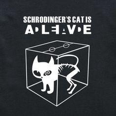 Big Bang Theory Schrodinger's Cat T-Shirt - Black