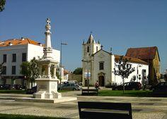 Anadia - Portugal - Pesquisa do Google