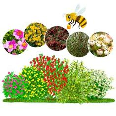 Gärtner Pötschkes Bienentankstelle