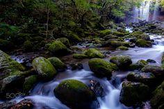 Stream by yfunei #nature #mothernature #travel #traveling #vacation #visiting #trip #holiday #tourism #tourist #photooftheday #amazing #picoftheday
