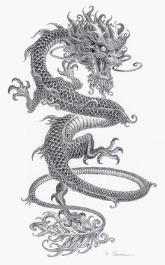 Crazy thin Chinese dragon tattoo with gray ink - tattoo ink . - Crazy thin Chinese dragon tattoo with gray ink – Tattooimages. Body Art Tattoos, Sleeve Tattoos, Tattoo Ink, Tattoo Flash, Tattoo Drawings, Tiger Tattoo, Small Tattoos, Arm Tattoo, Tattoo Illustrations