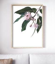 The Eucalyptus Blossom Print celebrates the beauty of Australia's native flora. Botanical Wall Art, Botanical Prints, Botanical Decor, Leaf Prints, Flower Prints, Flower Wall, Cow Art, Beautiful Space, Beautiful Flowers