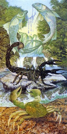 The water signs (Cancer, Scorpio, Pisces) are passive and receptive. Highly sensitive, they tend to release their energy cautiously. Water signs enhance empathy and the ability to feel/ intuit deeply.  Breathtaking illustration by Linda and Roger Garland (ariellesastrology.com)