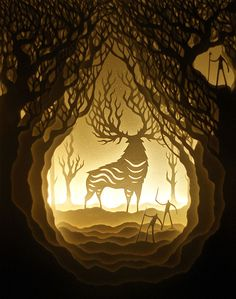Paper Cut Shadow Boxes Illuminated by Light
