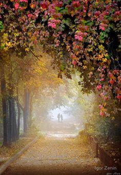 Stroll In The Fog -- by Igor Zenin on Redbubble